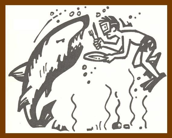 WGCB-shark medium